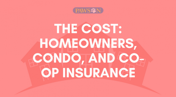 Ct Homeowners Condo And Co Op Insurance What 39 S The