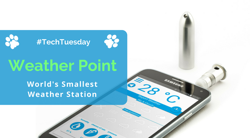 Weather-Point-Review