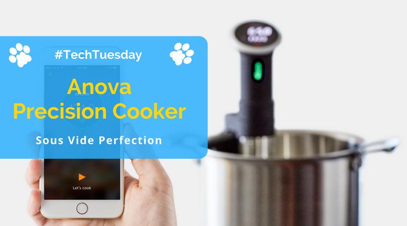 Anova-Precision-Cooker-Review