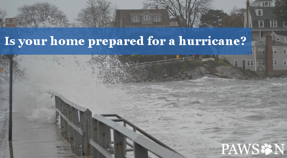 "The NOAA Climate Prediction Center expects this year's hurricane season to be a ""near-normal""."