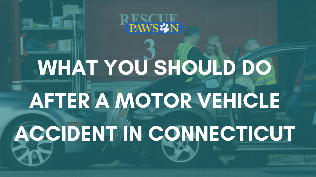 What You Should Do After a Motor Vehicle Accident in