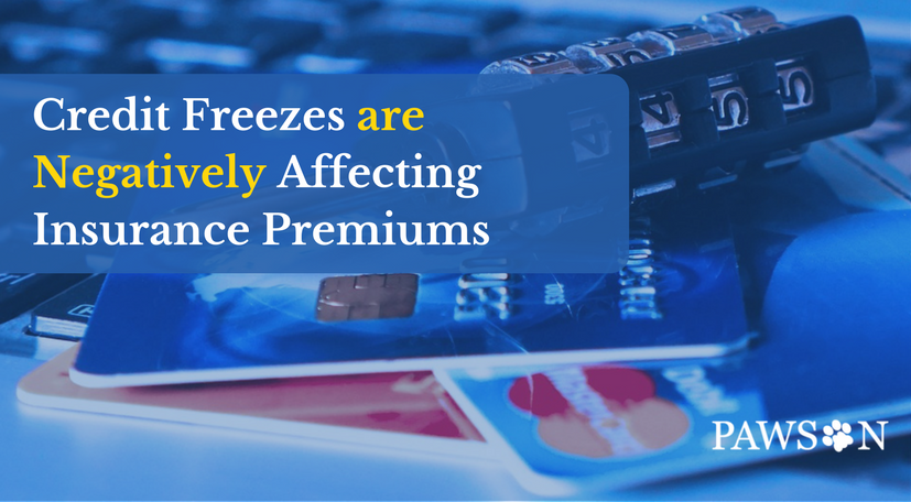 Credit Freezes Are Negatively Affecting Insurance Premiums