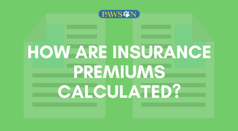 How Are Insurance Premiums Calculated Pawson Insurance