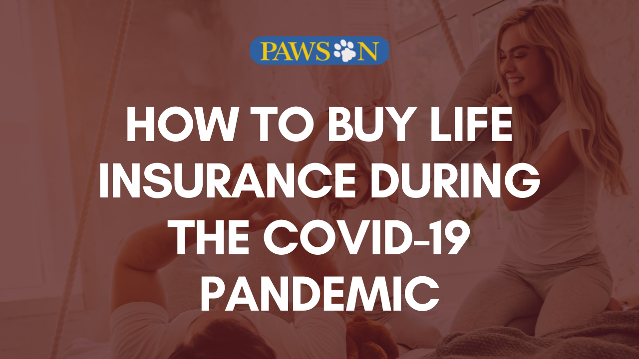 How To Buy Life Insurance During The Covid 19 Pandemic Pawson