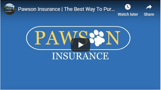 pawson Insurance